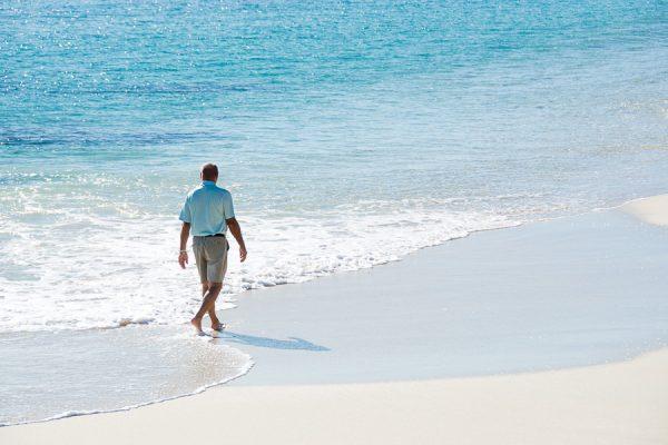palmilla beach cabo san lucas